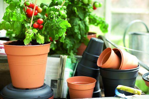Green basics growpot Ø40