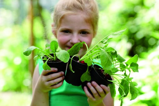 Green basics growpot Ø27