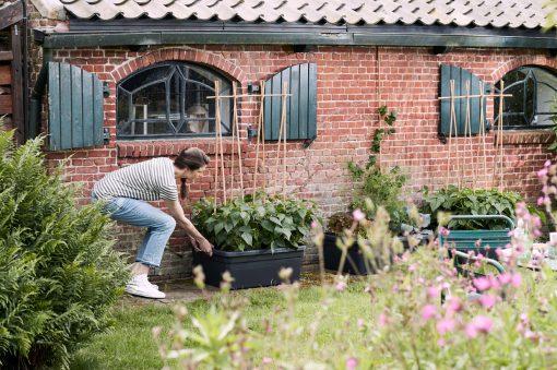 moveable garden green basics